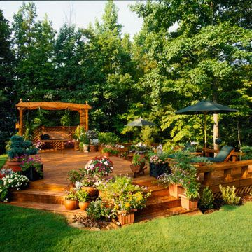 Decking planting ideas
