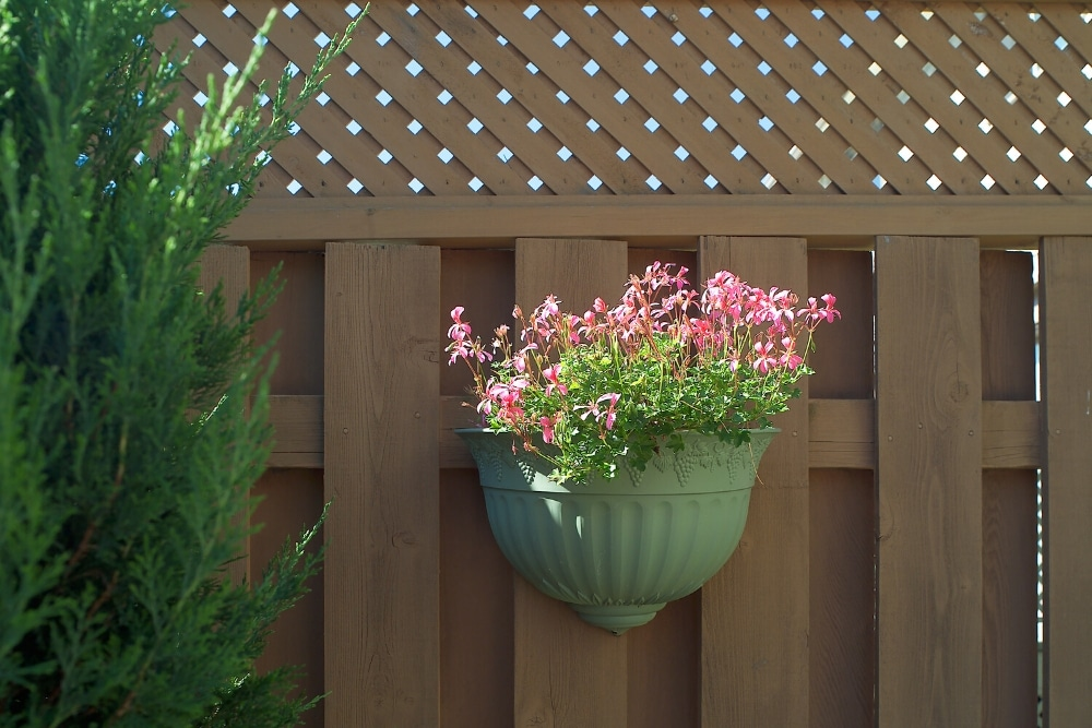 garden fence trellis