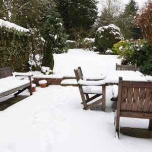 Prepare your garden for the winter